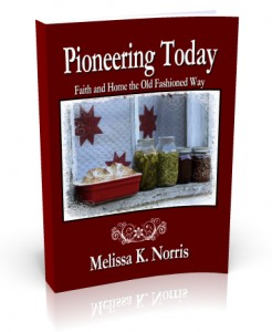 Pioneering-Today
