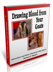drawing-blood-goats