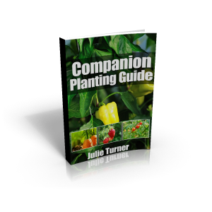 companion-planting-cover3d
