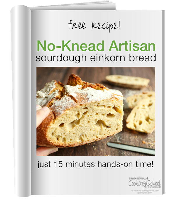 einkorn-no-knead-bread