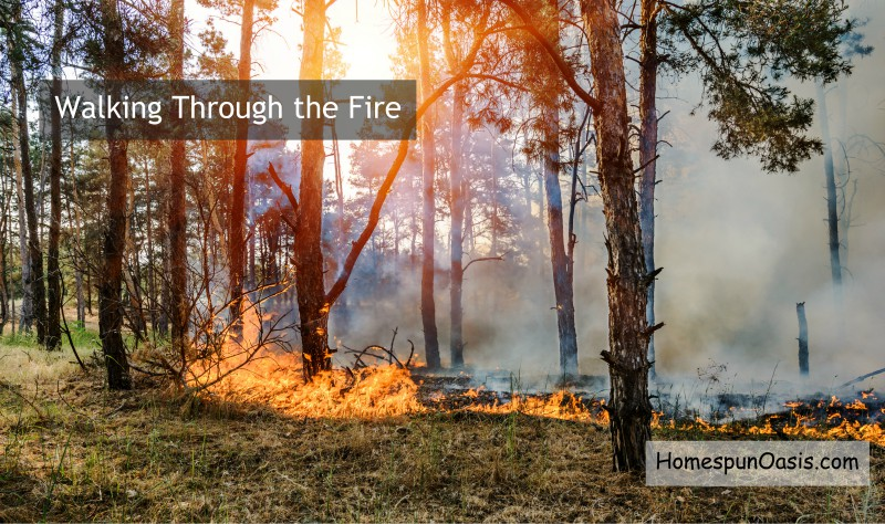 Walking Through the Fire | HomespunOasis.com