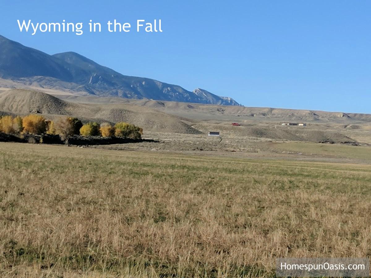 Savoring the Last Sips of Fall | HomespunOasis.com